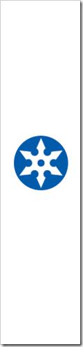 shoguflag